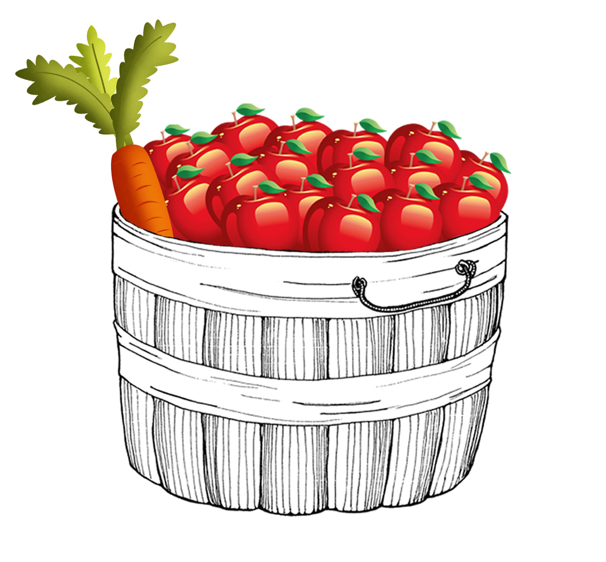 Bushel basket full of apples and one carrot.