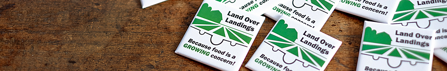 pins with Land Over Landings logo