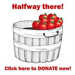 Apple Basket Half-Filled Icon